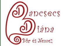 Dancsecs Diána, Bőr és Nemez